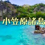 東京から1000km世界遺産の小笠原諸島のドローン映像が素敵過ぎる件