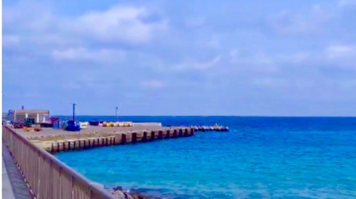 新島観光協会から「来島を我慢されている方」向けに配信される動画に癒される